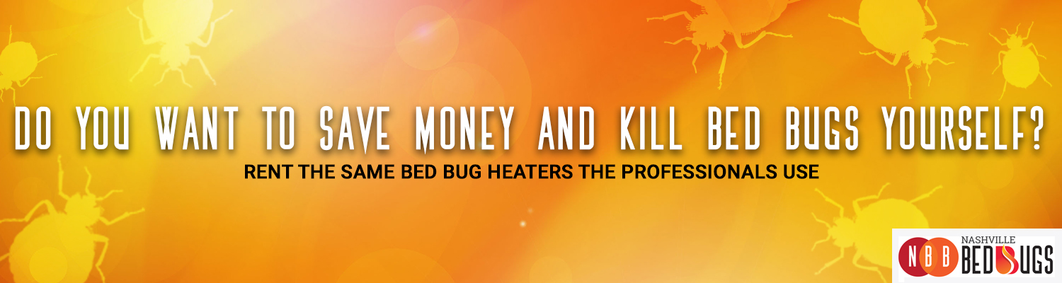 bed bug rental equipment