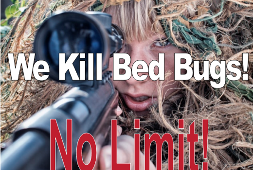 We Kill Bed Bugs